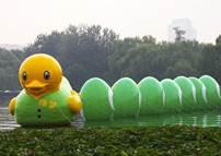 易百科:大黄鸭版权之争